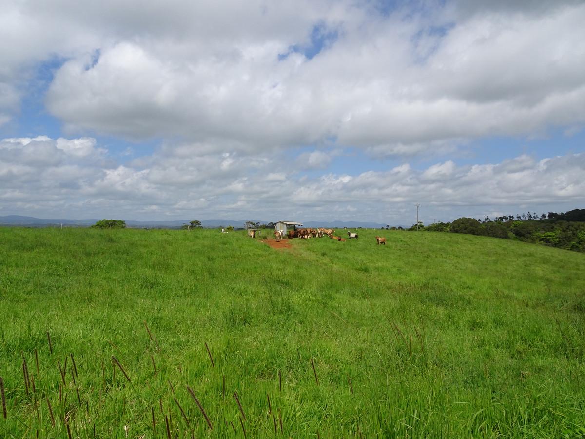 64.75 ha to acres
