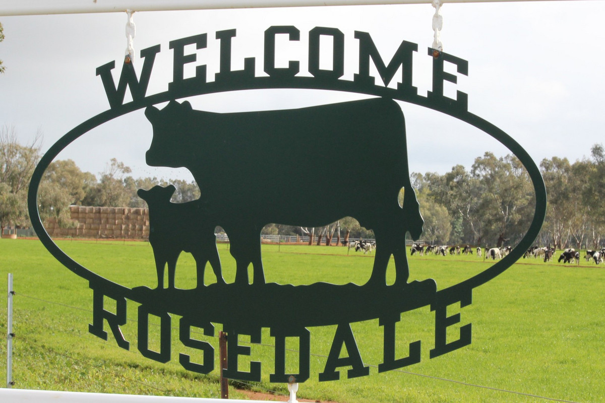 """Rosedale"" a First Class Dairy Opportunity"