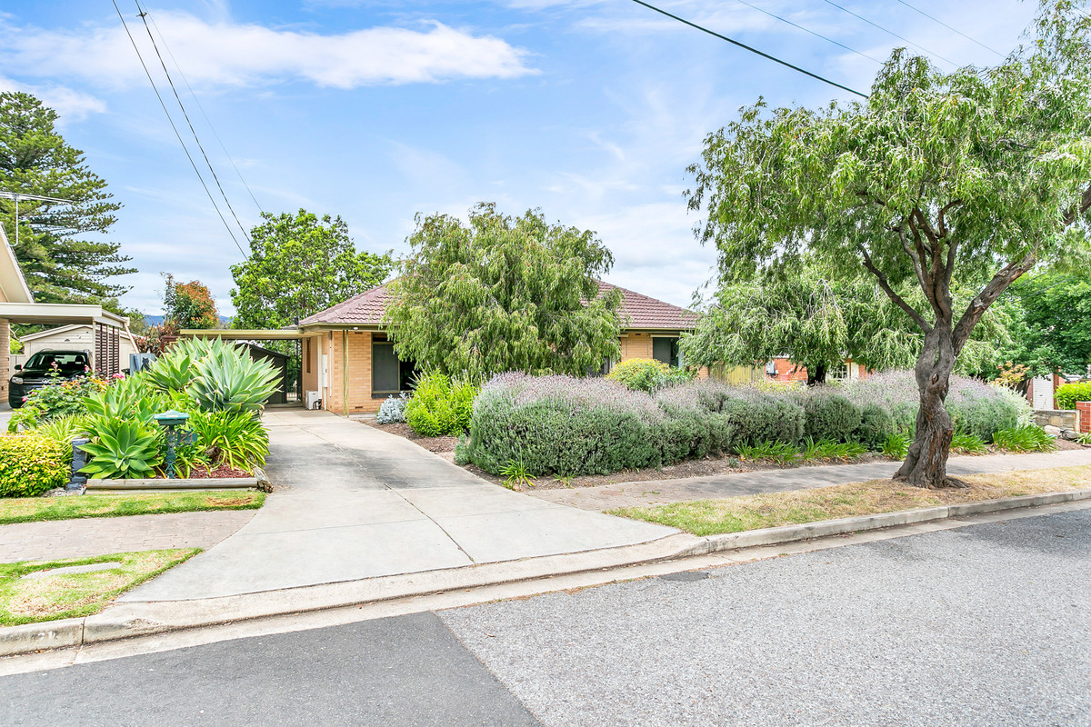 21 Tindara Avenue, Windsor Gardens SA 5087 (2534588)